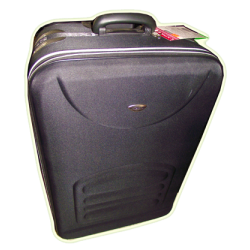 Luggage 20 Inches (Prestige)